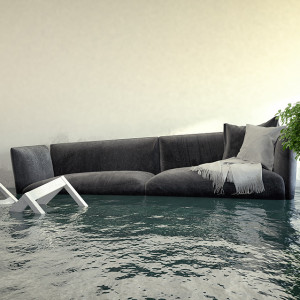 What to Do When You Think Your Home Has Water Damage