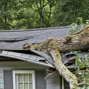 How to Handle Storm and Roof Damage to Your Maple Grove MN Home