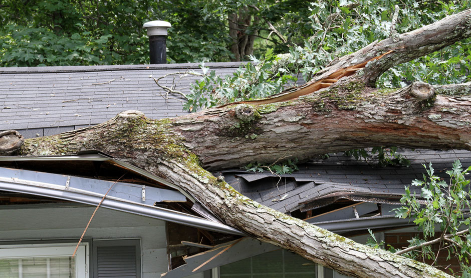 Storm Damage Repair | Minneapolis