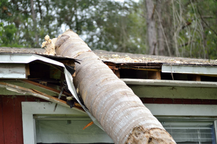 dealing-with-siding-damage