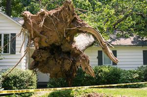 identify-storm-damage